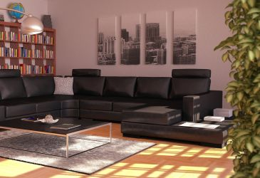 Leather couch 04