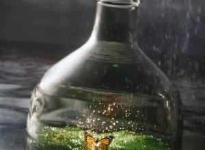 Elf-bottle-fin2-lowres.jpg
